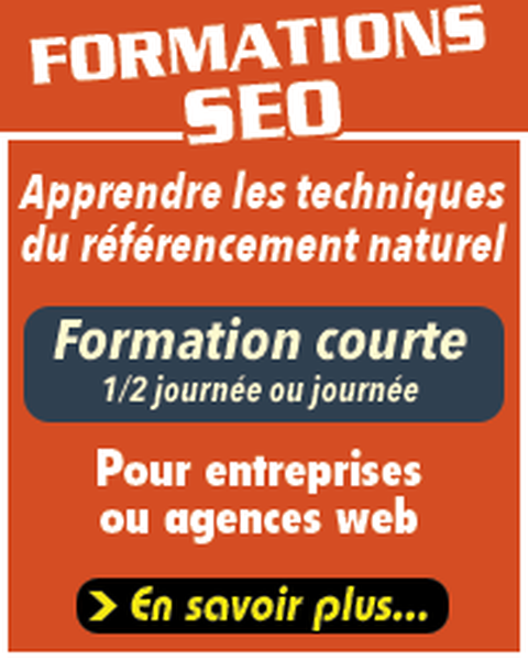 test referencement seo
